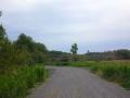Pathway in Summer