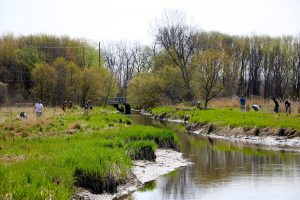 Planting on both sides of the river