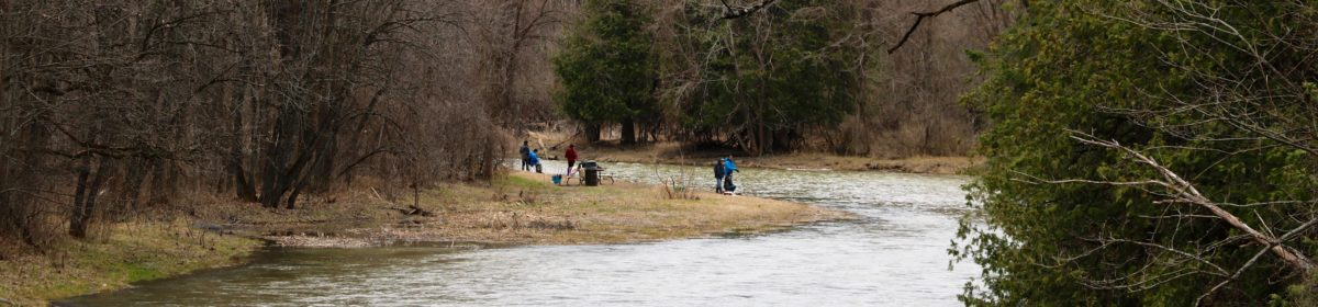 Fishing the Carp River at Fitzroy Provincial Park